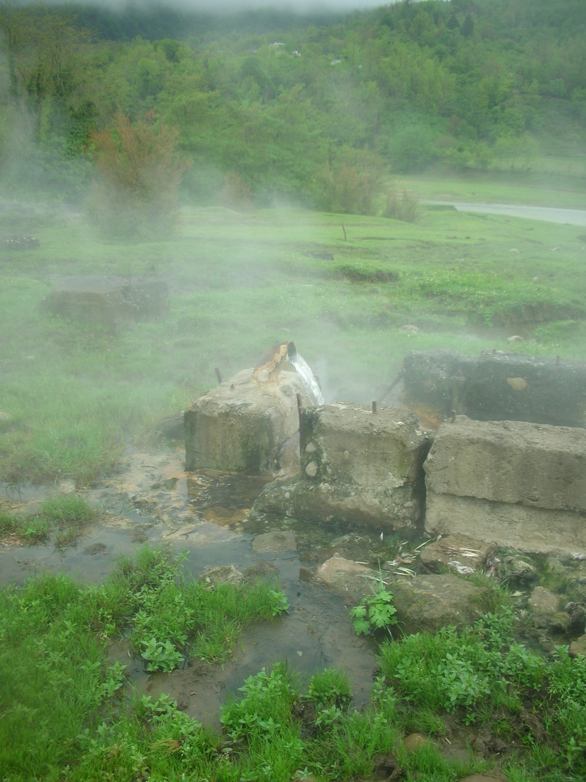 Zugdidi district, vil. Tsaishi, 4-K